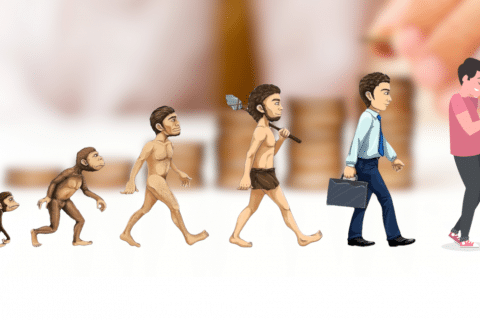 A evolução dos investimentos
