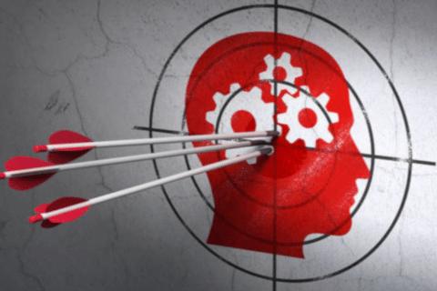 como funciona o cérebro do cliente