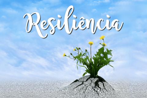 capacidade de resiliência