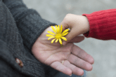 Gentileza e compaixão nos ajudam a lidar com a dor emocional