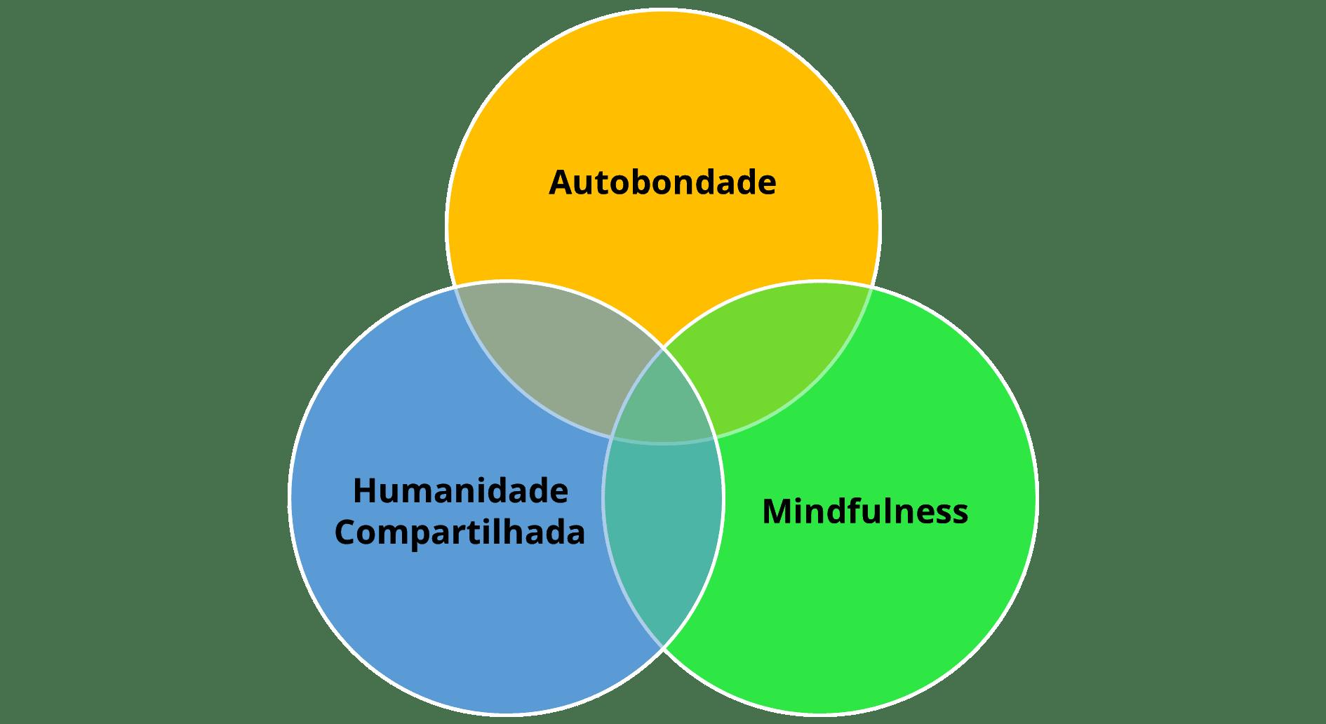 Para iniciar a prática da autocompaixão vamos fortalecer 3 pilares: