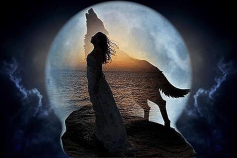 Cure o seu Feminino, com as mulheres que correm com lobos