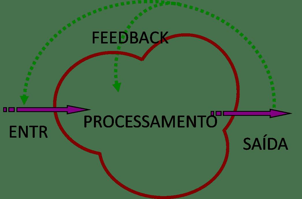 Cosmovisão Holossistêmica: O que é e por que você precisa saber