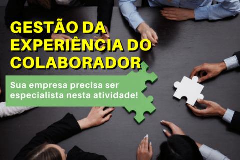 Gestão da Experiência do Colaborador: Sua empresa precisa ser especialista nessa atividade!